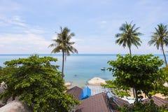 Δέντρο καρύδων στην παραλία καρύδων στο νησί γιων, Kien Giang, Βιετνάμ Κοντά στο νησί Phu Quoc Στοκ φωτογραφίες με δικαίωμα ελεύθερης χρήσης