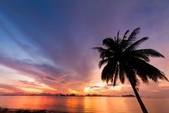 Δέντρο καρύδων με το όμορφο ηλιοβασίλεμα με τη θάλασσα και το υπόβαθρο νησιών Στοκ φωτογραφία με δικαίωμα ελεύθερης χρήσης