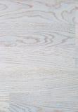 Δέντρο κενό Στοκ φωτογραφίες με δικαίωμα ελεύθερης χρήσης