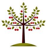 δέντρο κερασιών ελεύθερη απεικόνιση δικαιώματος