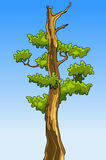 Δέντρο κινούμενων σχεδίων με τα φύλλα χωρίς κορυφές Στοκ εικόνες με δικαίωμα ελεύθερης χρήσης