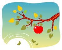 δέντρο κλάδων μήλων διανυσματική απεικόνιση