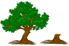 δέντρο κολοβωμάτων ελεύθερη απεικόνιση δικαιώματος