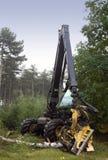 δέντρο κοπτών Στοκ εικόνες με δικαίωμα ελεύθερης χρήσης