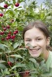 δέντρο κοριτσιών κερασιών  Στοκ φωτογραφία με δικαίωμα ελεύθερης χρήσης