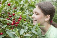 δέντρο κοριτσιών κερασιών  Στοκ εικόνα με δικαίωμα ελεύθερης χρήσης