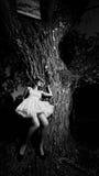 δέντρο κοριτσιών Στοκ φωτογραφίες με δικαίωμα ελεύθερης χρήσης