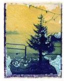 δέντρο λιμενικών πεύκων Χρ&iota Στοκ Φωτογραφία