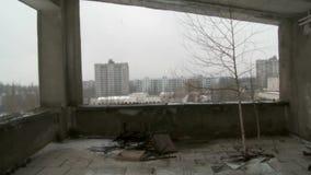 Δέντρο μέσα στην εγκαταλειμμένη ιδιοκτησία απόθεμα βίντεο