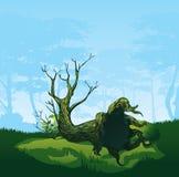 Δέντρο με μια κυρτή κορώνα διανυσματική απεικόνιση