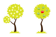 Δέντρο με τα λουλούδια και δέντρο με τα πράσινα και κόκκινα μήλα Στοκ εικόνα με δικαίωμα ελεύθερης χρήσης