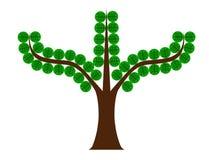 Δέντρο με τα στρογγυλά φύλλα Στοκ Εικόνες