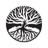 Δέντρο με τις ρίζες στον κύκλο ελεύθερη απεικόνιση δικαιώματος