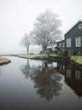 Δέντρο με τον άσπρο παγετό Στοκ φωτογραφία με δικαίωμα ελεύθερης χρήσης