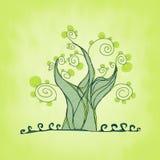Δέντρο με τους κλάδους και τα φύλλα, φρέσκια χλόη Στοκ φωτογραφίες με δικαίωμα ελεύθερης χρήσης