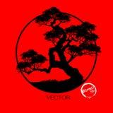 Δέντρο μπονσάι, διανυσματική απεικόνιση Στοκ Εικόνα