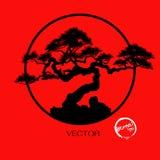 Δέντρο μπονσάι, διανυσματική απεικόνιση Στοκ Εικόνες