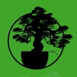 Δέντρο μπονσάι, διανυσματική απεικόνιση Στοκ Φωτογραφία
