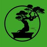 Δέντρο μπονσάι, διανυσματική απεικόνιση Ελεύθερη απεικόνιση δικαιώματος