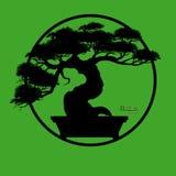 Δέντρο μπονσάι, διανυσματική απεικόνιση Στοκ φωτογραφία με δικαίωμα ελεύθερης χρήσης