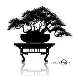 Δέντρο μπονσάι, διανυσματική απεικόνιση Διανυσματική απεικόνιση