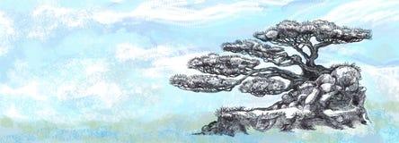 Δέντρο μπονσάι, σχεδιασμός Στοκ φωτογραφία με δικαίωμα ελεύθερης χρήσης