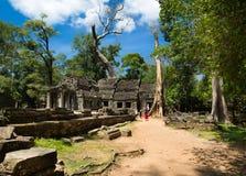 Δέντρο ναών, Angkor Wat στην Καμπότζη Στοκ εικόνα με δικαίωμα ελεύθερης χρήσης