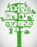 δέντρο οικολογίας Στοκ Εικόνες