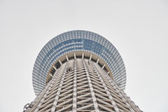 Δέντρο ουρανού του Τόκιο (Skytree) Στοκ Εικόνες