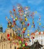 Δέντρο Πάσχας, Πράγα στοκ φωτογραφίες