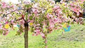 Δέντρο Πάσχας στον κήπο - σύγχρονος παιδικός σταθμός δημόσιου κτιρίου - παιδικός σταθμός απόθεμα βίντεο