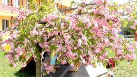 Δέντρο Πάσχας στον κήπο - σύγχρονος παιδικός σταθμός δημόσιου κτιρίου - παιδικός σταθμός φιλμ μικρού μήκους
