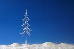 δέντρο παγακιών έλατου στοκ φωτογραφία με δικαίωμα ελεύθερης χρήσης