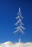 δέντρο παγακιών έλατου στοκ εικόνα