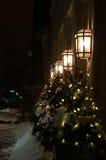 Δέντρο πεζοδρομίων Στοκ φωτογραφίες με δικαίωμα ελεύθερης χρήσης