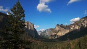 Δέντρο πεύκων και νυφικές πτώσεις πέπλων στο εθνικό πάρκο Yosemite απόθεμα βίντεο