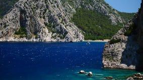 Δέντρο πεύκων με το μπλε υπόβαθρο Τουρκία θάλασσας φιλμ μικρού μήκους
