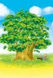 δέντρο πιάνων κοριτσιών Στοκ φωτογραφία με δικαίωμα ελεύθερης χρήσης