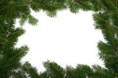 δέντρο πλαισίων Χριστουγ στοκ φωτογραφία με δικαίωμα ελεύθερης χρήσης