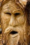 δέντρο πνευμάτων Στοκ φωτογραφία με δικαίωμα ελεύθερης χρήσης
