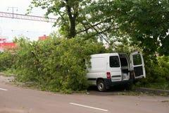 Δέντρο που βρίσκεται το αυτοκίνητο στην οδό στοκ εικόνες