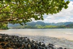 Δέντρο που πλαισιώνει τη δύσκολη παραλία Kauai, Χαβάη στοκ εικόνα με δικαίωμα ελεύθερης χρήσης