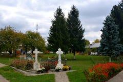 Δέντρο Προαύλιο του μοναστηριού Zamfira Στοκ φωτογραφίες με δικαίωμα ελεύθερης χρήσης