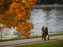 Δέντρο πτώσης και δύο κορίτσια στο υπόβαθρο Στοκ εικόνα με δικαίωμα ελεύθερης χρήσης