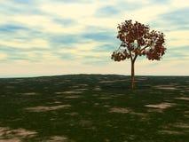 δέντρο πτώσης Στοκ Εικόνα