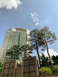 Δέντρο πύργων και το υπόβαθρο ουρανού στοκ εικόνες