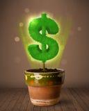 Δέντρο σημαδιών δολαρίων που βγαίνει από flowerpot Στοκ εικόνες με δικαίωμα ελεύθερης χρήσης