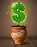 Δέντρο σημαδιών δολαρίων που βγαίνει από flowerpot Στοκ φωτογραφίες με δικαίωμα ελεύθερης χρήσης