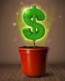 Δέντρο σημαδιών δολαρίων που βγαίνει από flowerpot Στοκ Εικόνες