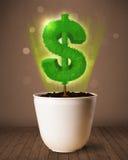 Δέντρο σημαδιών δολαρίων που βγαίνει από flowerpot Στοκ Φωτογραφία